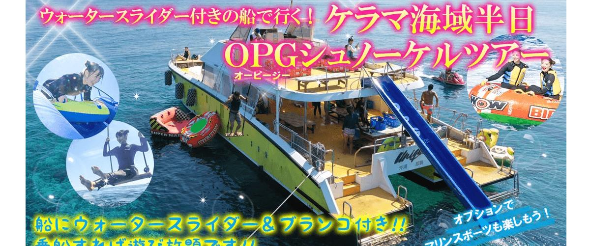 株式会社OPGの画像3